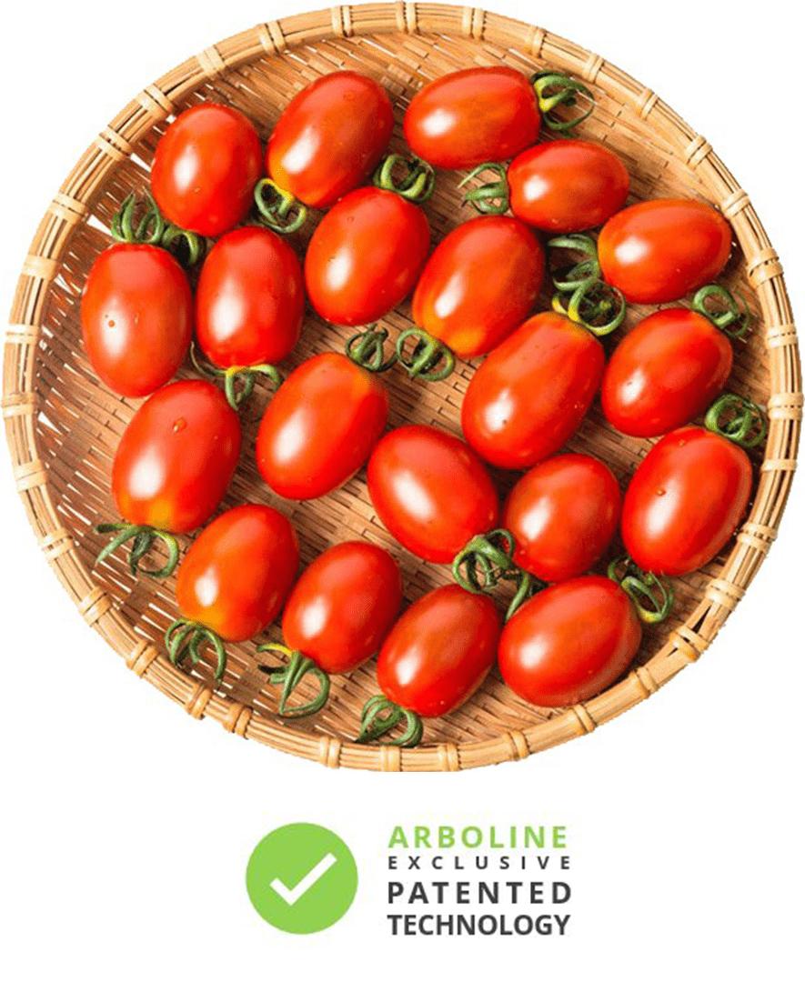 tomate-krilltech_english.jpg